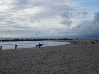 Surfers at Venice Beach